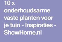 Tuin / planten