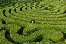 Inspiring gardens / Landscape architecture, gardens, and tips from around the web