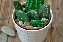 Cactus in pietra