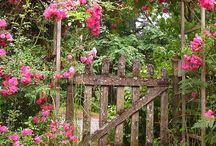 Gates and Gardens / by Denise Bammert