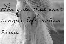 Horses. Love of my life ❤️❤️