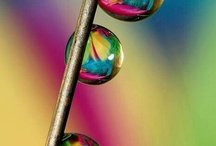 rainbow colors / colors