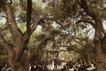 Wedding Locations in Orange County