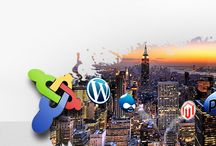 Web designing with UI & UX / Website comparison UI Survey Product user interface development