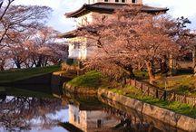 Japon: les châteaux