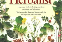 Growing Herbs in the Garden / growing herb plants and their uses / by Athleen McElwee