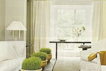 Living Rooms / Living rooms - ideas and inspiration for your home.  Elegant and classic living rooms.  Coastal style, hamptons style, country style and modern.