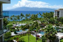 Maui the Boomer Way / Maui the Boomer Way combines adventure experiences with luxury accommodations, spa treatments and fine dining. My pins will help you create a Maui experience your way. / by Donna Hull