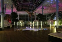 Paradise called Therme Bucharest / One of the biggest Spa in Europe with geothermal waters