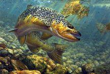 Fishing art