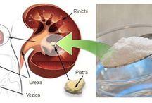 rinichi trstent