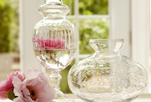 Apothecaries,Bell Jars, and Terrariums / by Kathy Laws