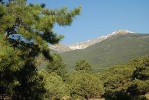 Colorado Campgrounds / Photos of Passport America Participating Campgrounds located in Colorado.