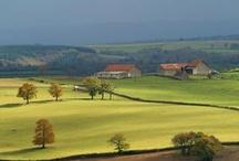 Rendez-vous en Bourgogne