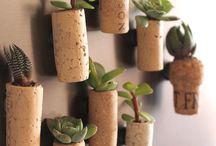 Planter i vinpropper