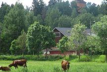 Finland/Suomi: Asikkala