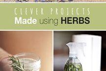 Herbs lékárna