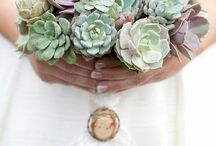 Sexy succulents / I love succulents as an unusual alternative to fresh flowers