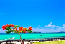 Mauritius: neighbouring Islets / Mauritius is surrounded by many islets worth visiting. Here's a list of them for your entertainment.