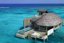 Maldives / Maldives Honeymoons & Vacations