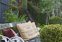 Tairua Garden ideas