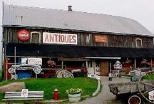 Antique Treasure Hunting in Headwaters