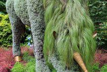 Plant Sculpture&Flower Art