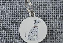 Delightful Dalmatian Things