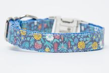 Floral Collections For Dogs and Cats