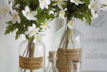 bottles / by Jennie  Lyn Juliano