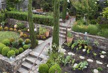 Backyard / by Kelly Vanauker-Ergle