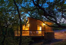 GLAMPING - STAY IN A TREE HOUSE / Luxury Glamping Experiences - Luxury Tree Houses - Nature and Ecotourism