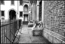 Milano - Milan / Foto a Milano