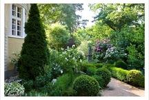 Garden Reno! / Villa garden