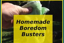 dog fit boredom busters