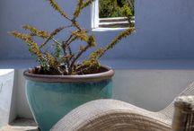 Vasi piante esterno