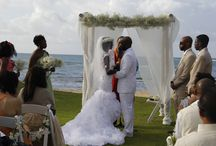 Loulu Palm Estate / Ocean Front wedding venue for up to 500 guest