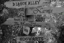 Fictional World.  / I want to visit these as much as the real world.