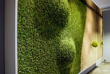 Urban elements - Living wall