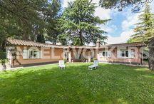 Parco privato con sei ville a Grottaferrata / Per saperne di più: http://bit.ly/1C5rqKU