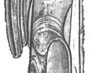 Dress 1100-1150 - Sources / Early 12th century clothing in original sources