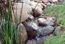 Design_Sustainable Garden