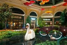 Travel: Hotels in the U.S. / Luxury hotels in the U.S.