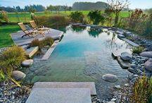 Garten-/Schwimmteich