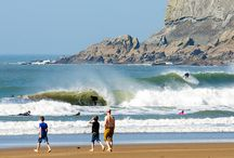 Surf Clubs and Organisations / UK surf clubs and organisations