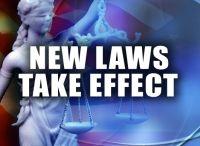 Criminal Law / DUI Speeding Criminal