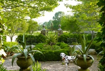 Garden/Landscape Design / by tarynrux