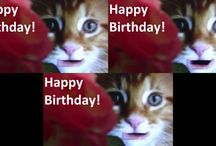 Happy Birthday Messages / Happy Birthday Messages for Her, for Him and for Friends. Over 10 nice birthday messages, free birthday songs and birthday wishes. Send free cards for friends on this special day birth. Cute cat talking wishes for you on funny videos.