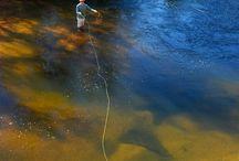 PECA /horgászás,/