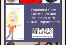 Expanded Core Curriculum / The Expanded Core Curriculum (ECC) provides a framework for instruction in a specialized set of vision-related skills for students who are blind or visually impaired.